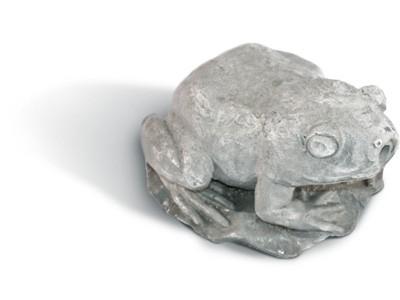 Žaba BF-79